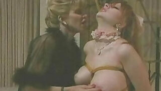 sexy video: Hollywood Confidential